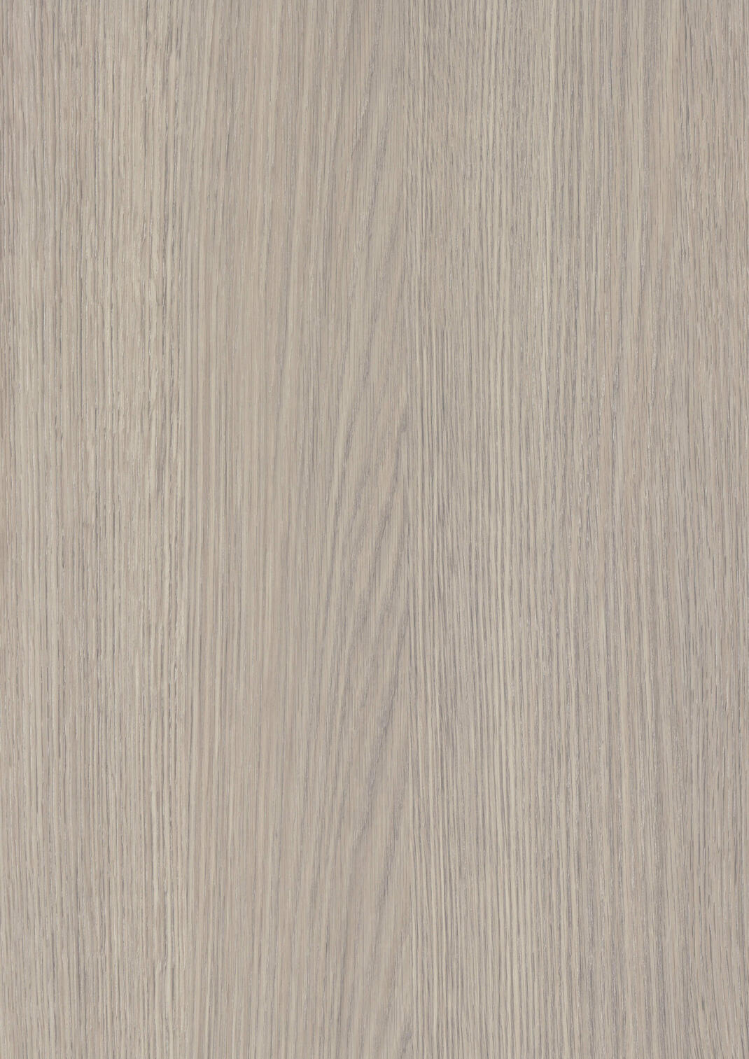 Limed OAK GREY - 3 - фото